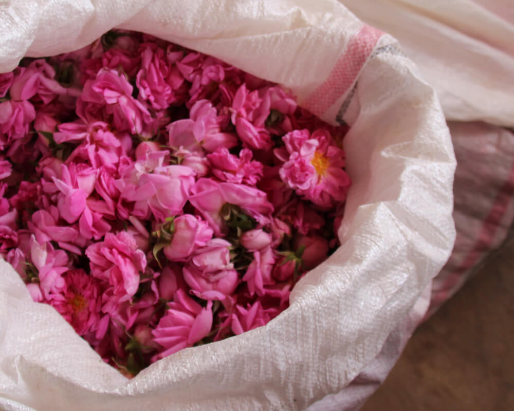 bag of rose petals