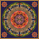 cocccon maharashtra colors of india scarf