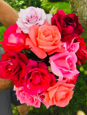 Kula Rose  ~ Organic & Fragrant ~ Call for availablity