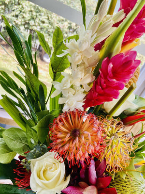 Tropical and Protea