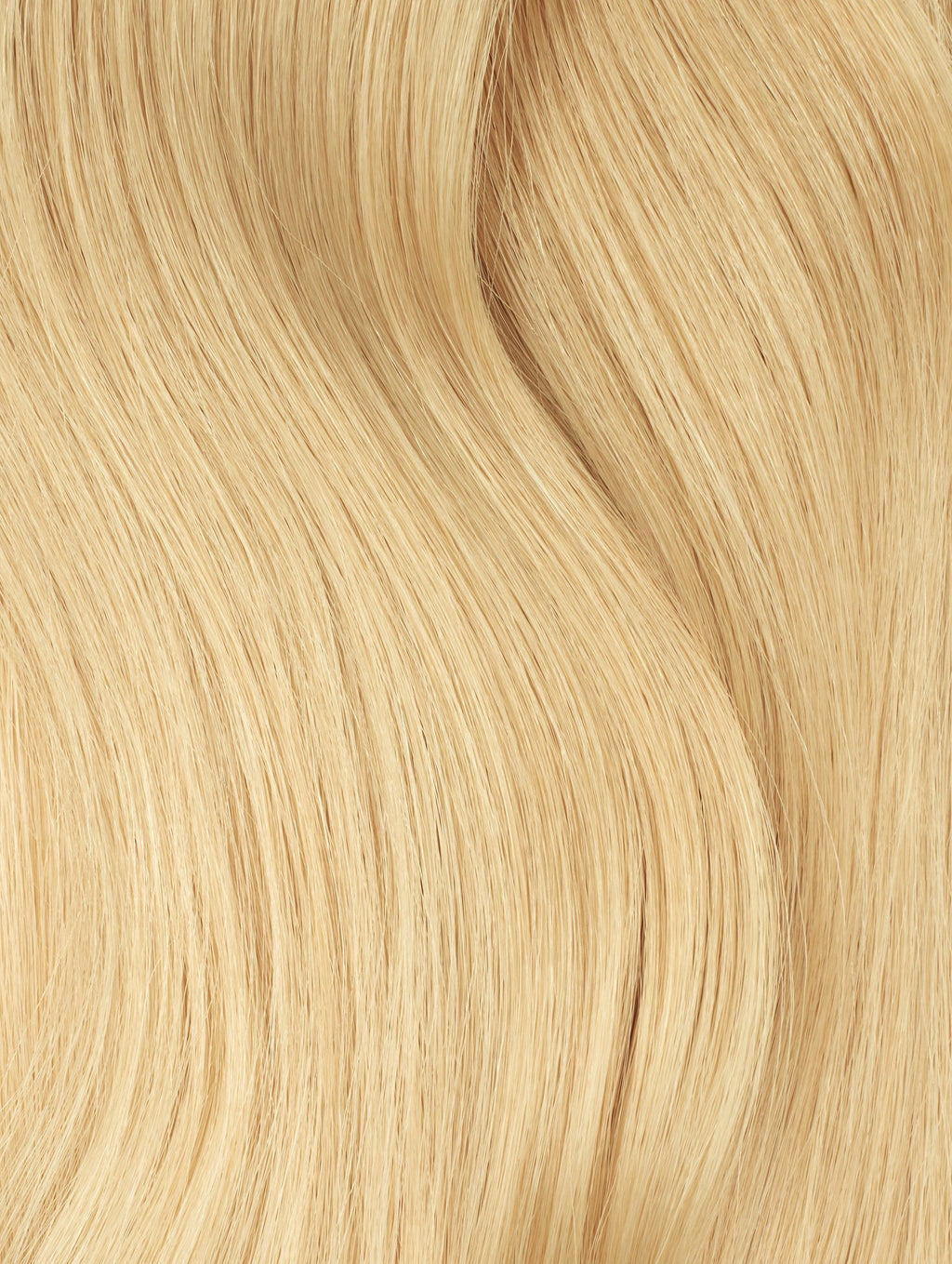 Golden Blonde (#22B) Tape - BOMBAY HAIR  - Blonde Tape Hair