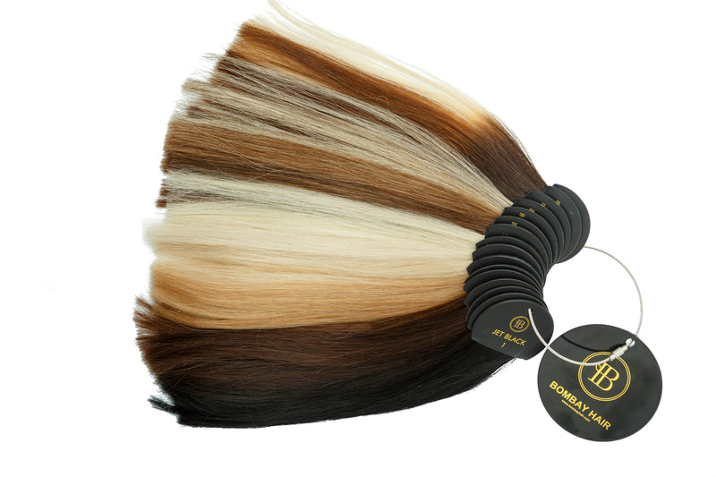 Clip Color Wheel - BOMBAY HAIR  - Accessories