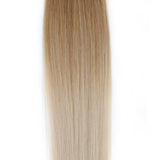 Ombre - Ash Brown (#9) to White Blonde (#60B) 16