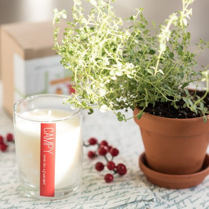 "Campy ""A Fresh Start"" soy candle"