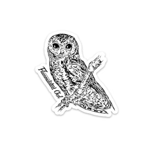 Flammulated Owl Magnet