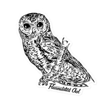 Load image into Gallery viewer, Life-size Flammulated Owl  Bumper Sticker