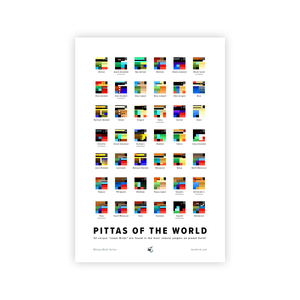 Pittas of the World Print