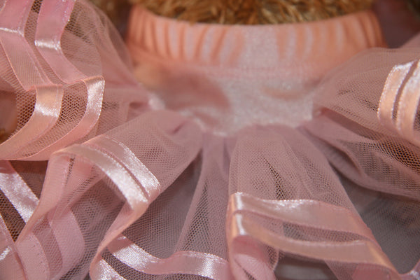 Teddy Bear Tutu-Special Celebration Events