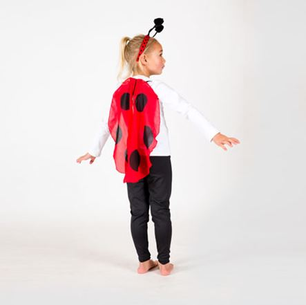 Ladybug Head & Wings Set