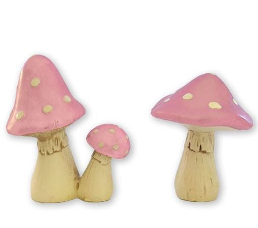 'LIL Mushrooms-Special Celebration Events
