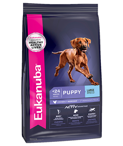 Eukanuba Large Breed Puppy 40#