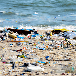The Top 6 Plastic Ocean Pollution Facts to Understand