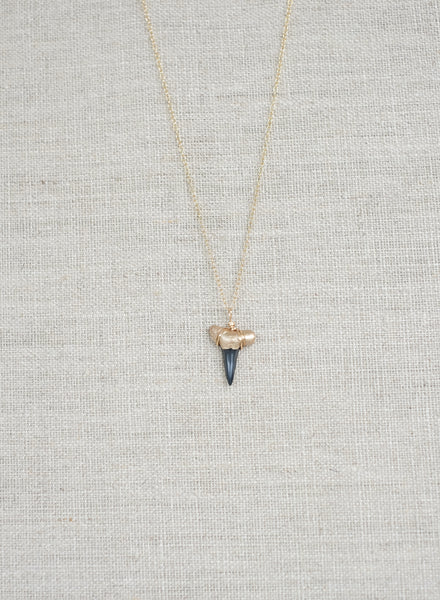 Gold-Tip Shark Tooth Necklace