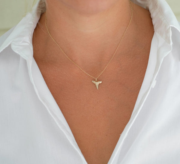Gold shark tooth necklace; Foxy Fossils necklace; real fossil shark tooth necklace; handmade fossil necklace in gold