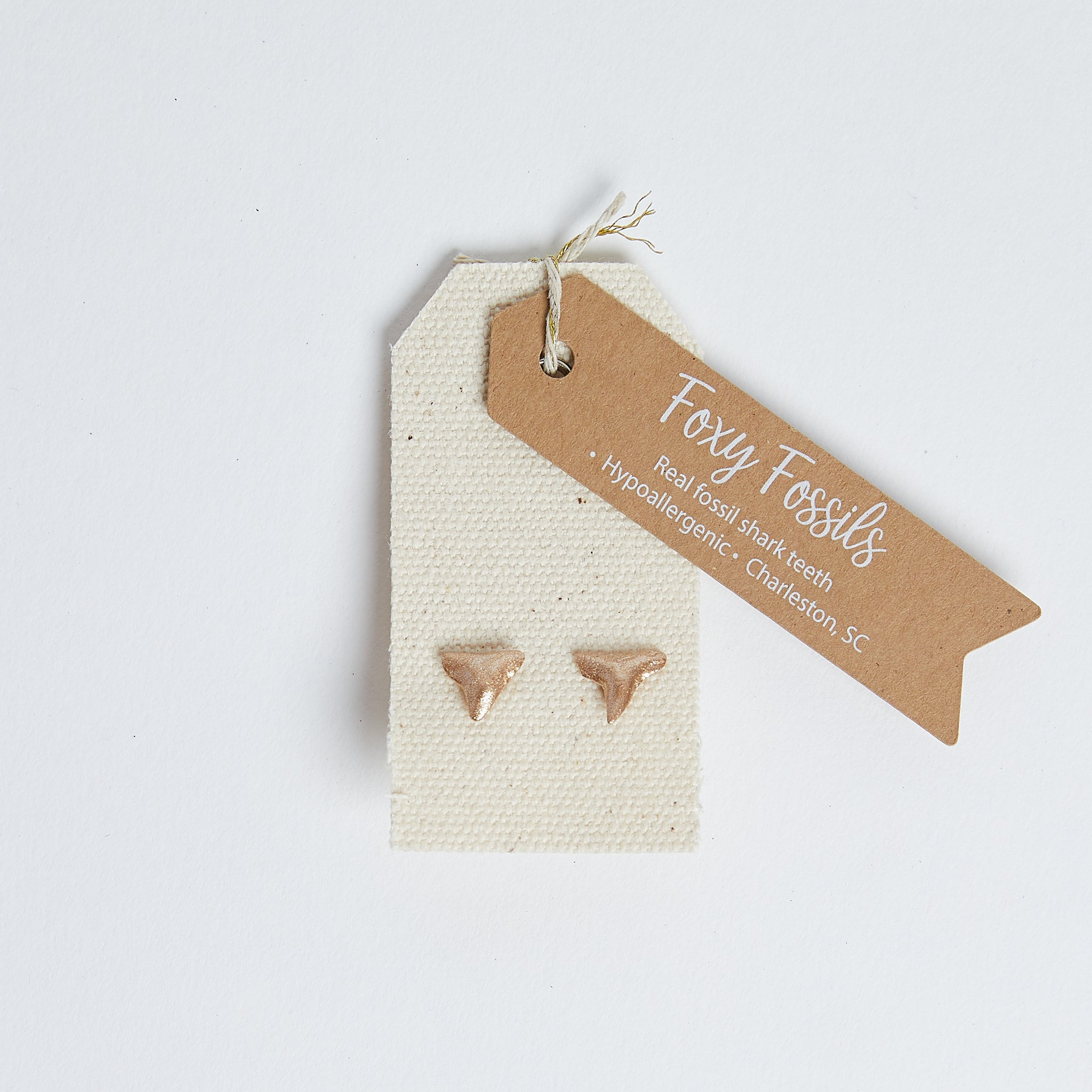 Gold Shark Tooth Stud Earrings | real shark tooth earrings gold- Foxy Fossils