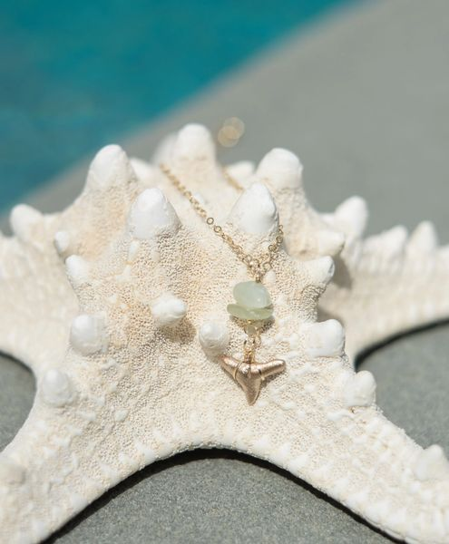 Of The Sea Necklace - Foxy Fossils