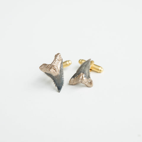 real fossil snaggletooth shark teeth fossil cufflinks