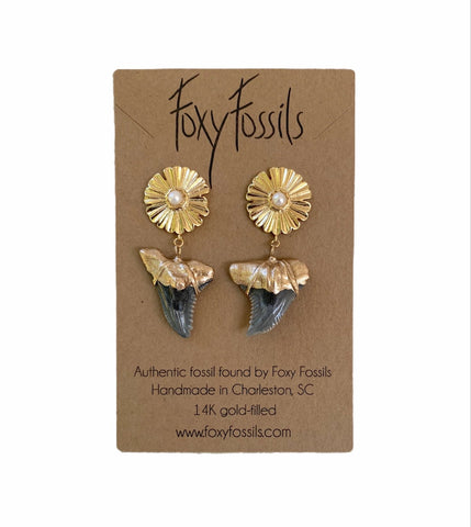 real fossilized shark teeth earrings gold tip hemipristis serra snaggletooth shark teeth earrings on gold sunburst ear studs with pearl-hemi and her—Foxy Fossils