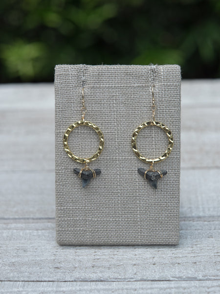 Fossil Chic Earrings - Foxy Fossils