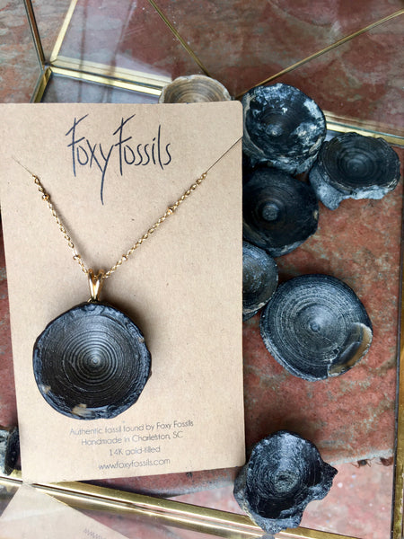 shark vertebra Fossil necklace | Real hand collected Fossil from prehistoric Charleston - Foxy Fossils