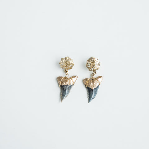 luxury shark teeth earrings - Foxy Fossils