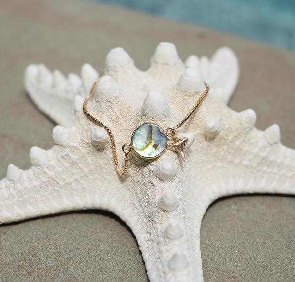 Abalone & Gold Shark Tooth Bracelet - Foxy Fossils