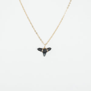 natural shark tooth pendant necklace
