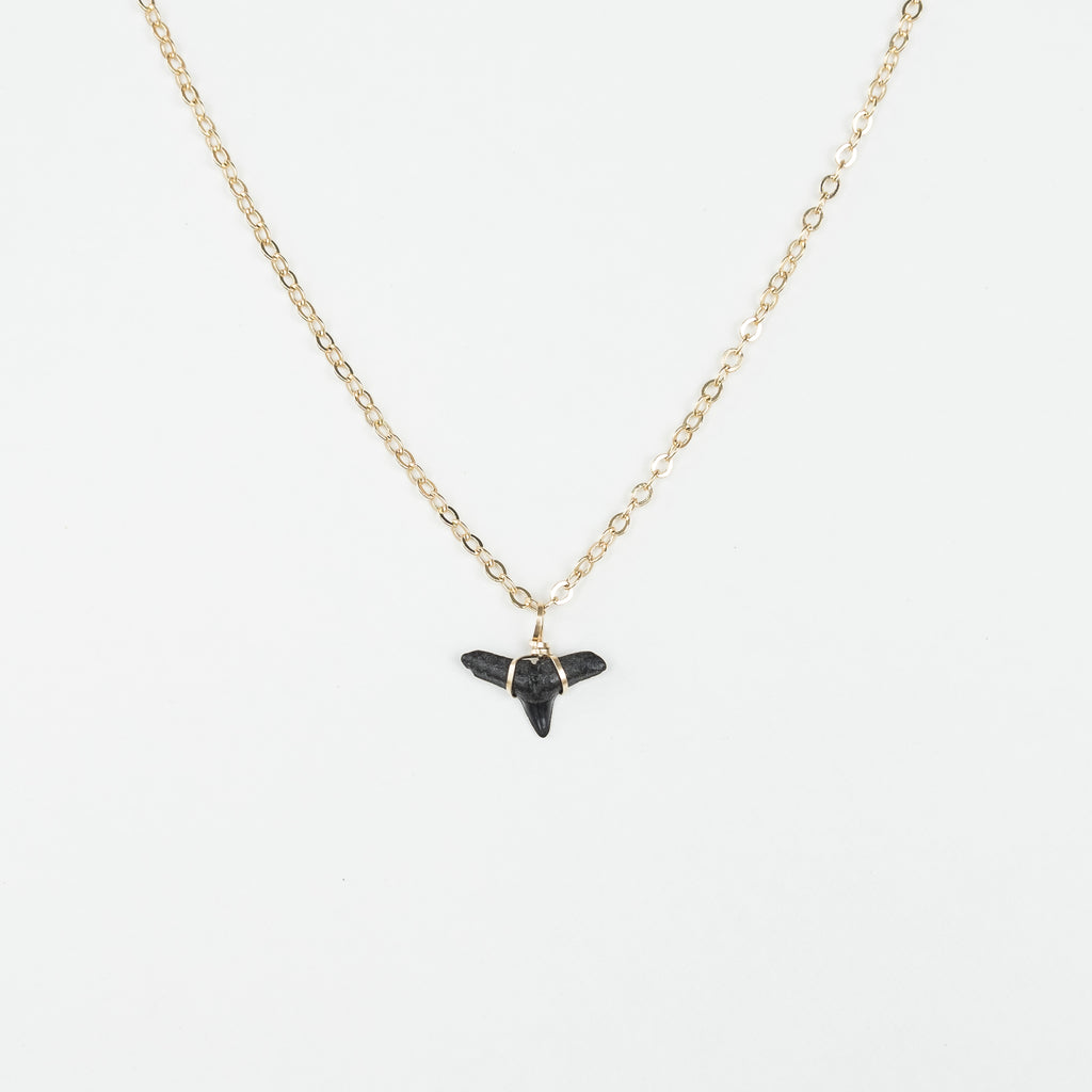 real fossil shark tooth necklace with gold wire wrapped shark tooth pendant