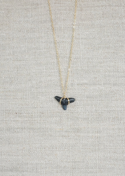 Horizons | Real Shark Tooth Necklace — Foxy Fossils