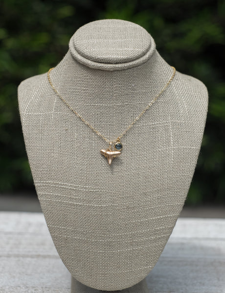 Dainty necklace with real fossilized shark tooth locally collected in Charleston, SC, and tiny glass pendant