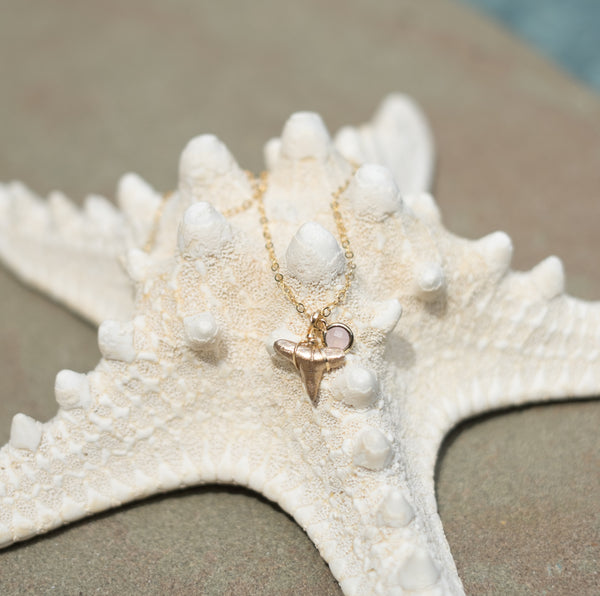14 Kt gold filled necklace with prehistoric fossilized shark tooth and glass pendant