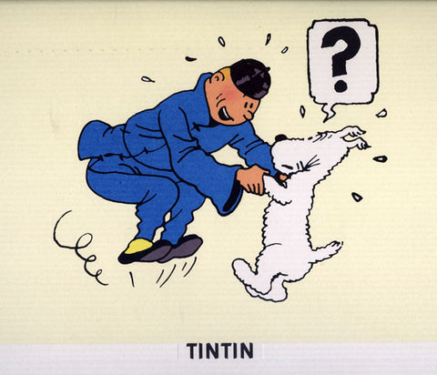 Tintin Jumps