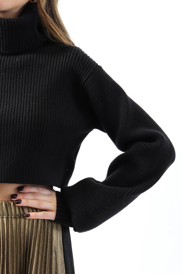 Basic Cropped Turtleneck