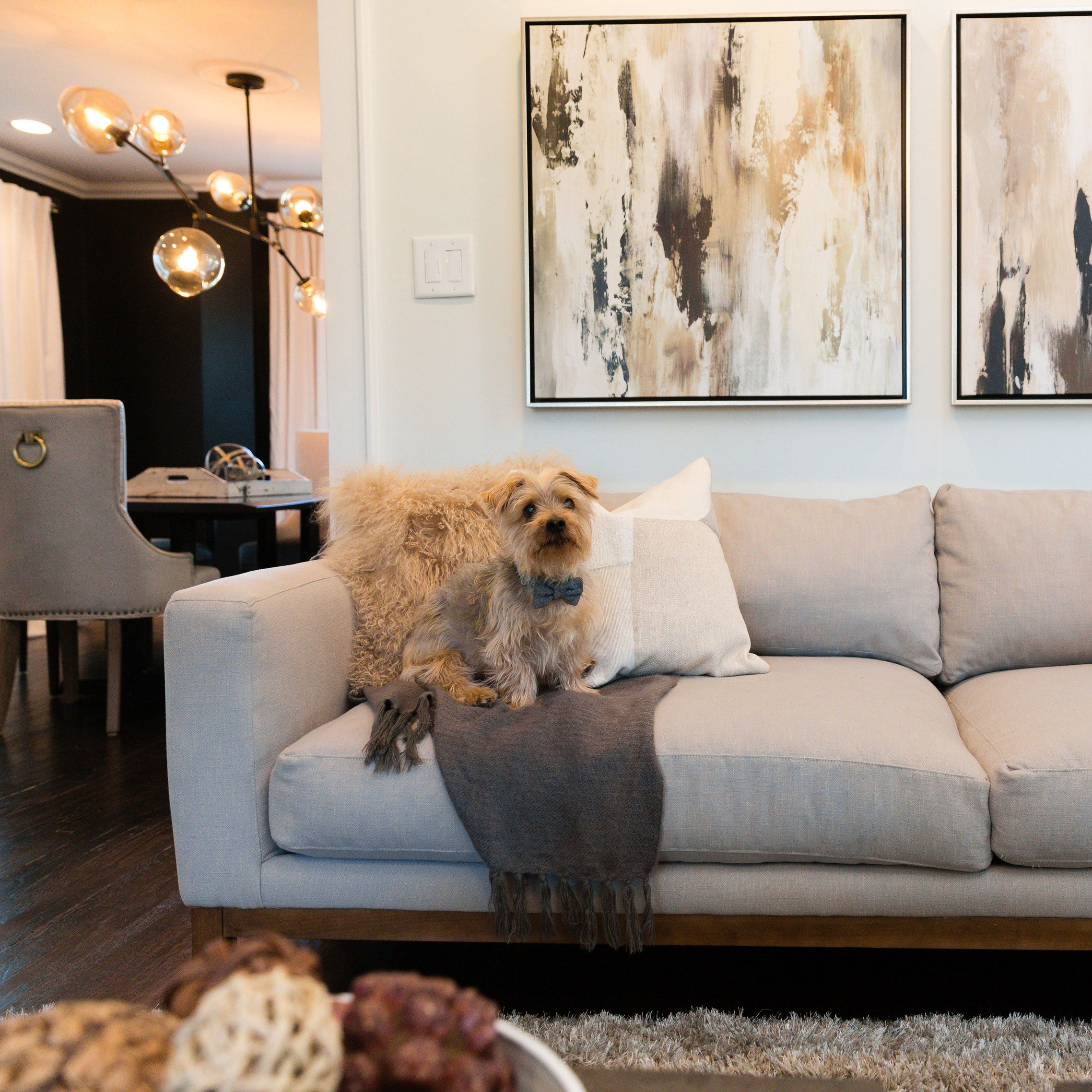 Every aspect of this beautiful home reflects its owner's unique sense of style and Delilah's sweet pup Samson is no exception in his bow tie!