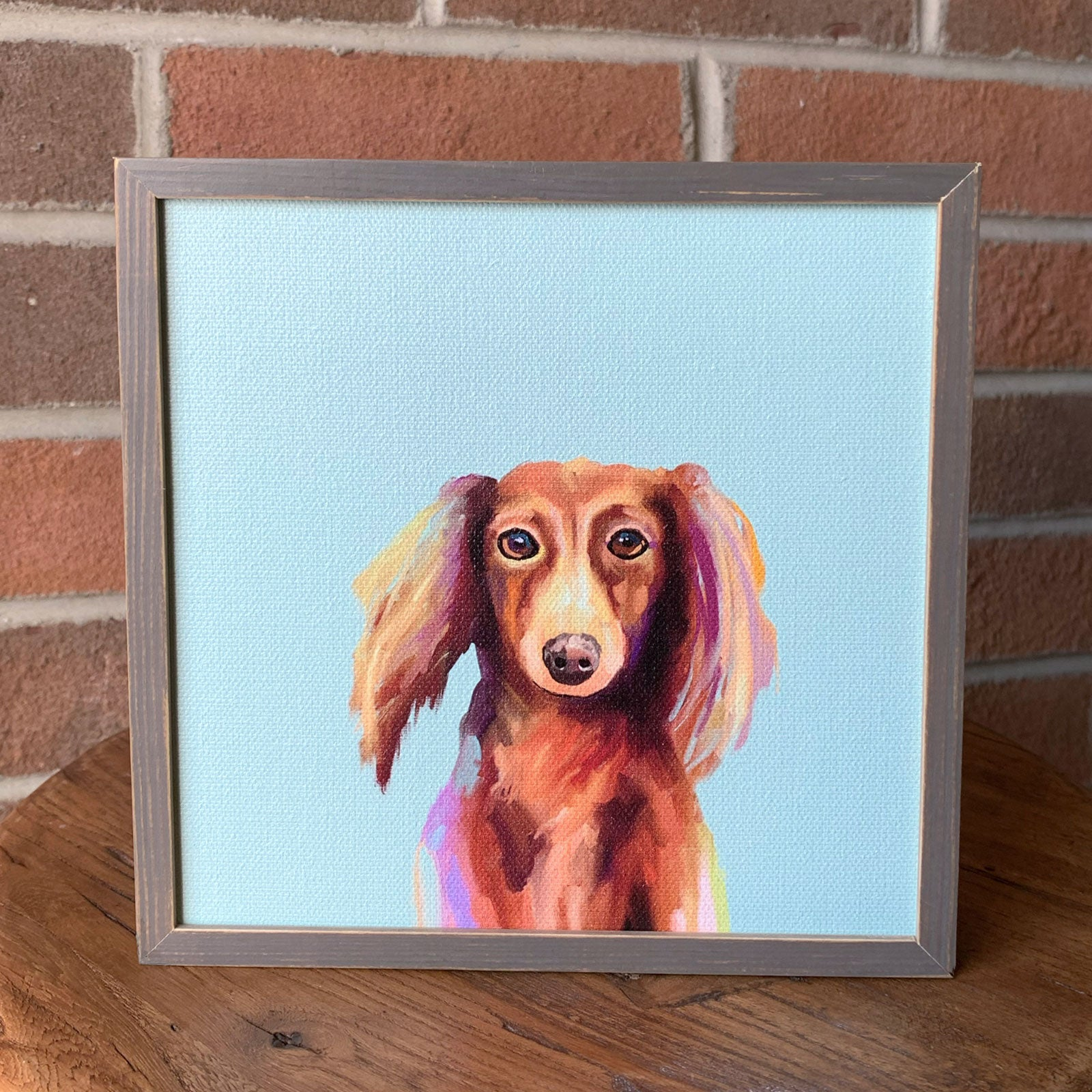 Longhaired Dachshund Mini Framed Canvas