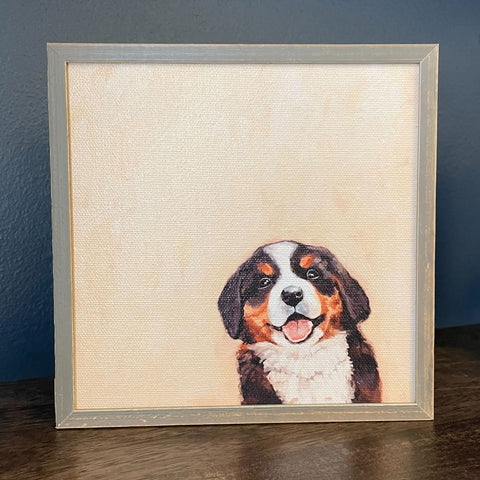 Bernese Pup Mini Framed Canvas