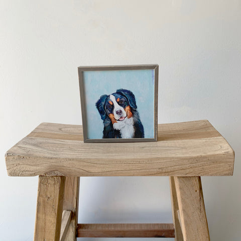 Bernese Mountain Dog Mini Framed Canvas