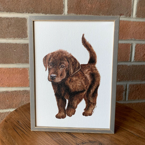 Chocolate Lab Pup Mini Framed Canvas