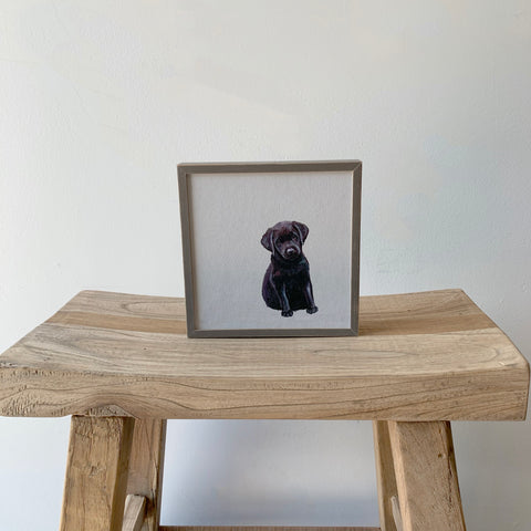 Black Lab Puppy Mini Framed Canvas