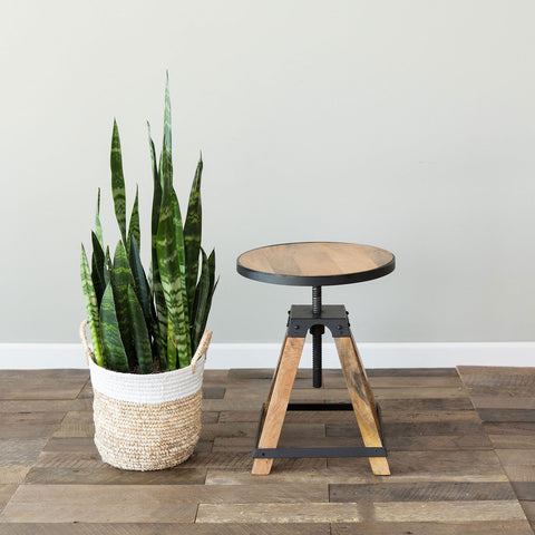 Jack Adjustable Stool