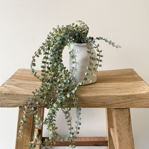 Hanging Artificial Fern