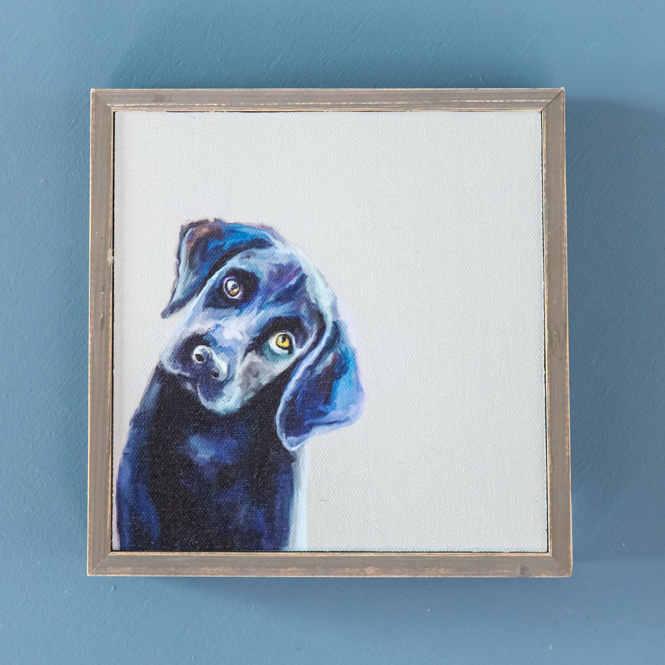 Black Lab Mini Framed Canvas