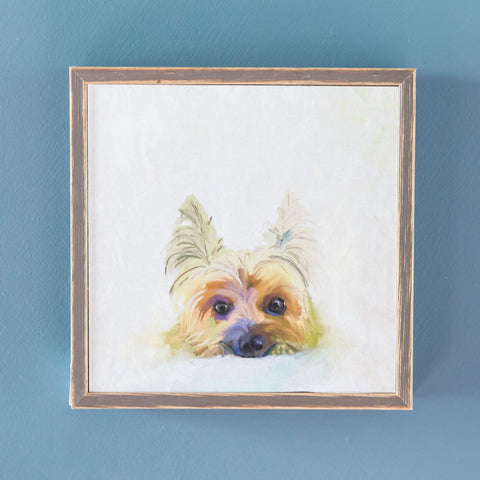 Yorkie Mini Framed Canvas
