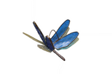 Stained Glass Dragonfly