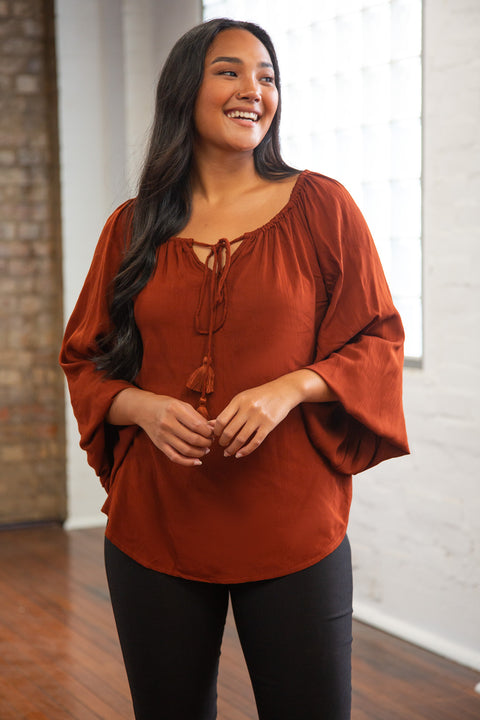 Maeve Billow Sleeve Top in Chocolate