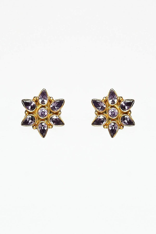 Shree Neelkanth Exports Earrings Default Stella Star Earrings in Amethyst