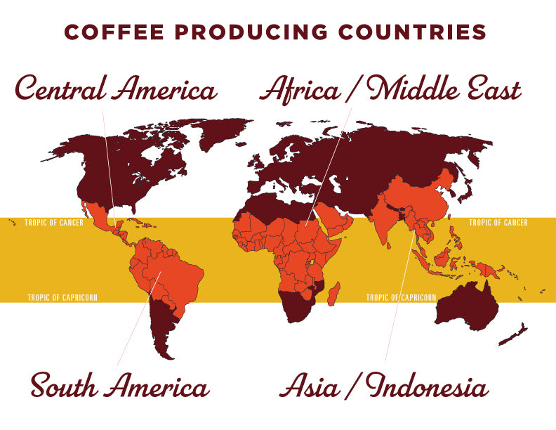 Coffee Producing Regions