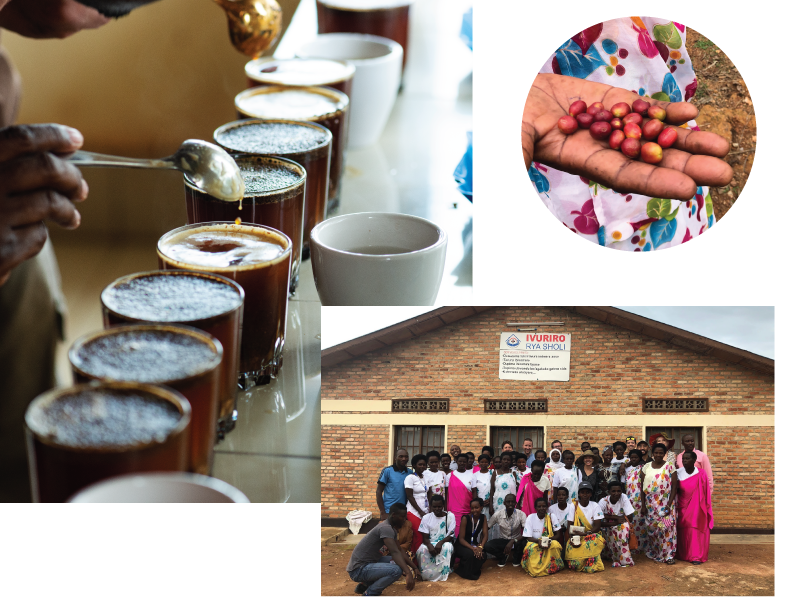Rwanda Sholi Coffee and Community