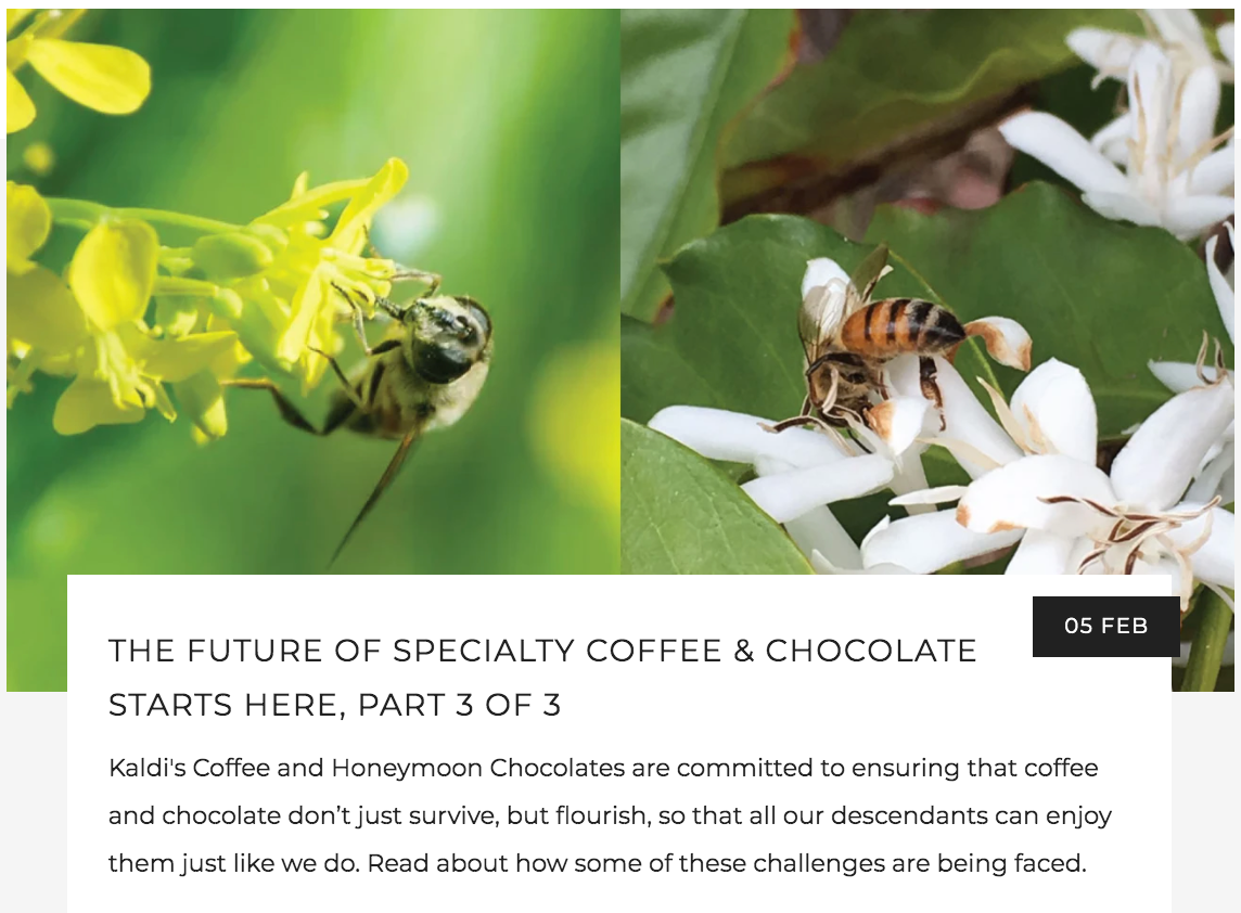 The Future of Specialty Coffee and Chocolate | Kaldi's Coffee Blog