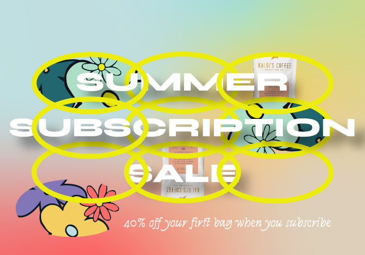 Subscription Summer Sale Lead Graphic
